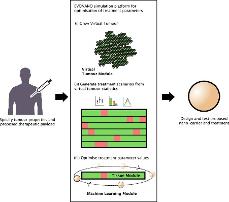 Research Spotlight: Evolutionary computational platform for the automatic discovery of nanocarriers for cancer treatment